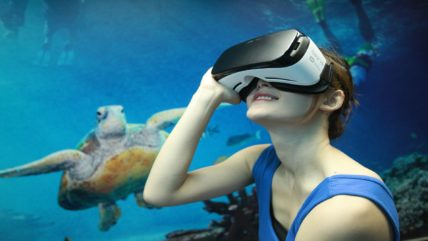 tourism australia 2016 case study 428x241 - Experiencing a virtual Australia